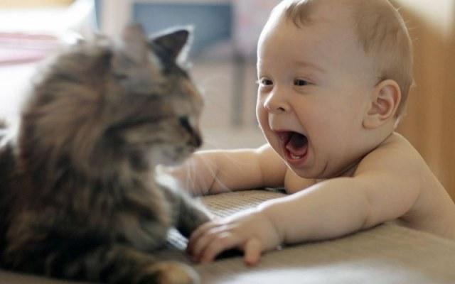 Грудной ребенок играет с котом
