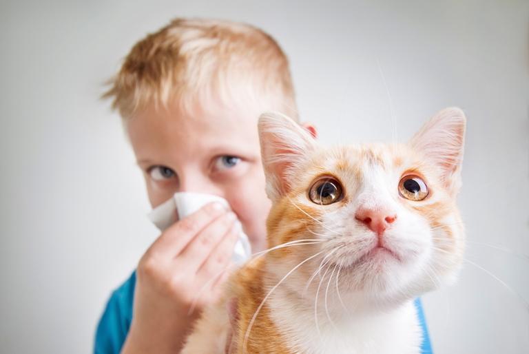 Мальчик держит рыжего кота