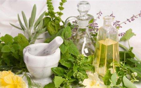 Растения для лечения печени