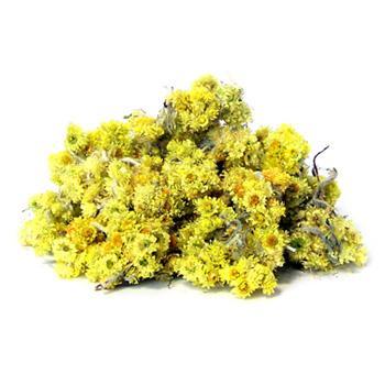 Бессмертник - трава для лечения печени