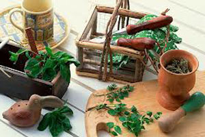 Набор для приготовления лекарства от болезни печени